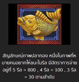 ปลาทอง 5 dragons slot