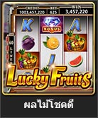 lucky fruits slot