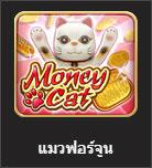 money cat online